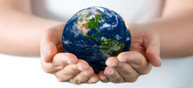 20 Environmental Charities You Should Knоw About