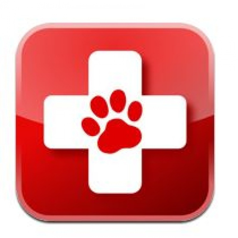 pet first aid 0